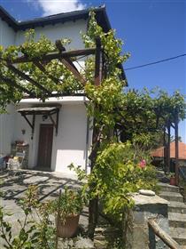 Μονοκατοικία στη Ζαγορά Πηλίου με εξαιρετική θέα στο Αιγαίο