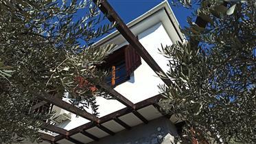 Πέτρινη ανακαινισμένη κατοικία στα Ζερβόχια, Πήλιo