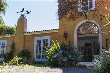 Quinta with B&B and amazing gardens – Absolute Dream Property!