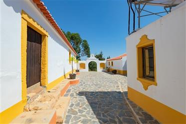 Rural Tourism with stables and vineyard in the Alentejo – Unique Property!