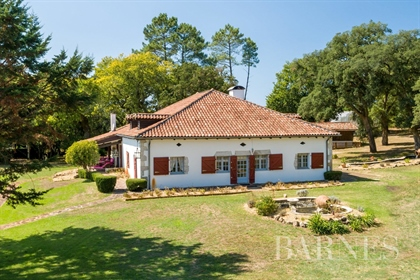 20 Minutes From Hossegor, Charming Property On 9000 Sqm Land