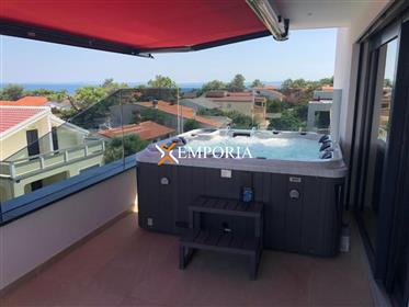House with 5 apartments – pool, whirlpool, sauna – Vir, 50 m from the sea