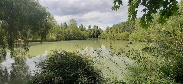 5 bedroom Maison de Maitre, pool, lake and 4 hectares - 5 minutes from Bergerac