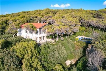 Villa with swimming pool and magnificent sea view near Castiglioncello