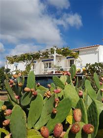 8,6 hectare property in Alentejo