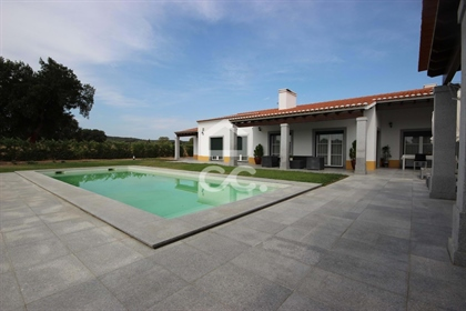 Farm of 8500m2 with t6 single bedroom villa and swimming pool | Évora