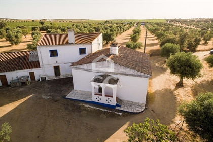Farm of 2,875 hectares with two villas | Round