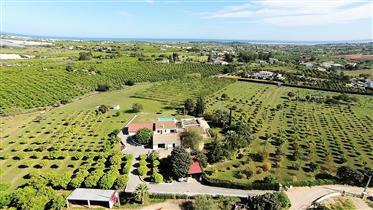 Land: 68,000 m²