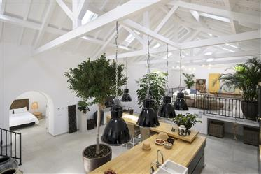 Casa: 672 m²