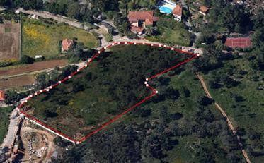 Rustikálna krajina na rozvoj v Malveire de Serra