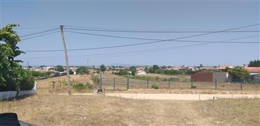 Terreno Urbano em Marinhais