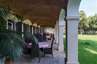Homestead 32 ha And 8 Rooms, For Sale In Santo Estêvão, Bena...