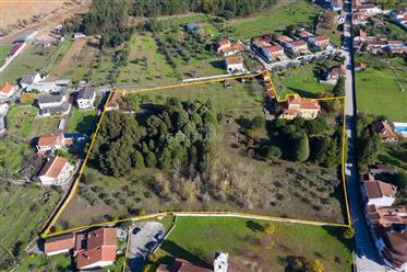 Quinta de 1,7 ha com palacete,casa de apoio,garagem e terren...