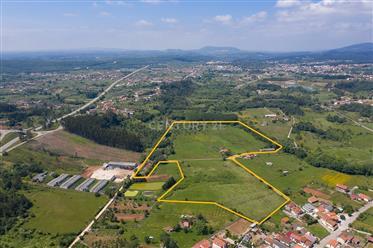 Quinta com 8,25 ha. Terreno plano abrangido pelo Pdm e 2 poços numa localização sossegada e bons ace
