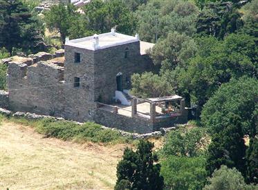 Πύργος Φολερού