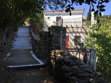 Μονοκατοικία με κήπο στις Στενιές Άνδρου