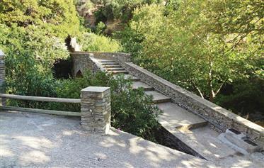 Υπέροχη μονοκατοικία στις Στενιες Άνδρου