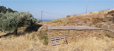 Οικόπεδο στις Μένητες, Άνδρος
