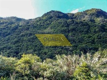Rustikales Land von 600 m2 im Arco de São Jorge - Insel Madeira - €70.000,00