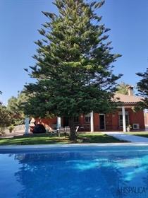 Preciosa parcela de 2523m2 con un bonito jardín con palmeras. Tiene piscina de 6x12 metros