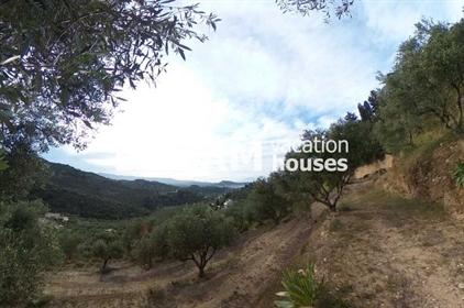 (Προς Πώληση) Αξιοποιήσιμη Γη Αγροτεμάχιο || Ν. Ζακύνθου/Ζάκυνθος Χώρα - 4.890 τ.μ, 150.000€