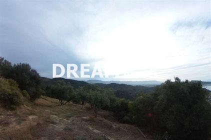 (Προς Πώληση) Αξιοποιήσιμη Γη Αγροτεμάχιο || Ν. Ζακύνθου/Ζάκυνθος Χώρα - 5.600 τ.μ, 270.000€