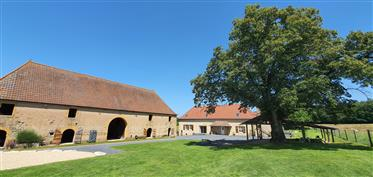 Fine old farmhouse, renovated, with ten acres