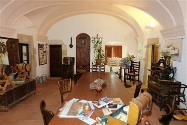 Huis: 867 m²