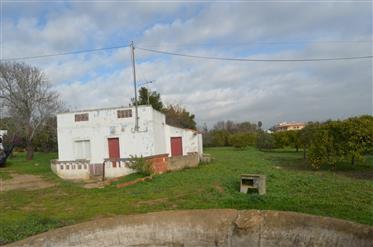 Terreno: 129 m²: 2248 m²