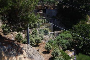 In vendita a Bordighera, collina di Montenero, casa di campagna