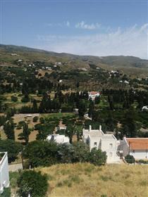 Το νησί της Άνδρου σε αυτό είναι το νησί των Ελλήνων εφοπλιστών