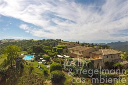Splendido casale di campagna con appartamenti e ampio giardino con piscina