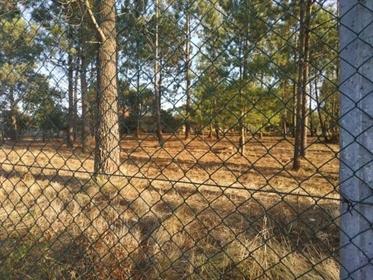 Terreno urbano com moradia para remodelar, nos Mouratos, Leiria