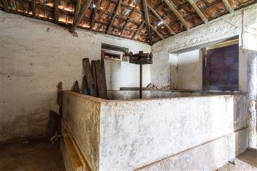 Haus: 340 m²