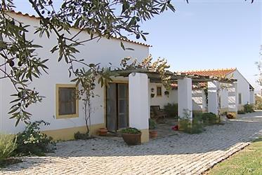 Vivenda: 326 m²