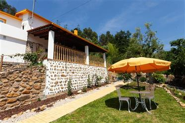 Farm with 2 houses, ideal for rural tourism, overlooking the Lousã mountain range, 5 min walk from t
