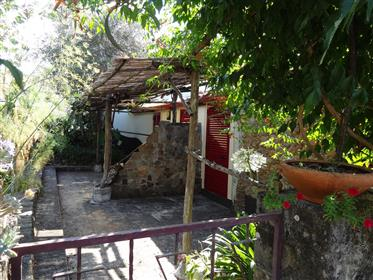 Quinta T7 with 2 houses, registered Alojamento Local/ B&B and/or holiday home/guest house, with Ter