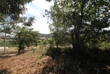 Moradia moderna isolada para venda na Costa de Prata de Portugal: Casa Casal Velho