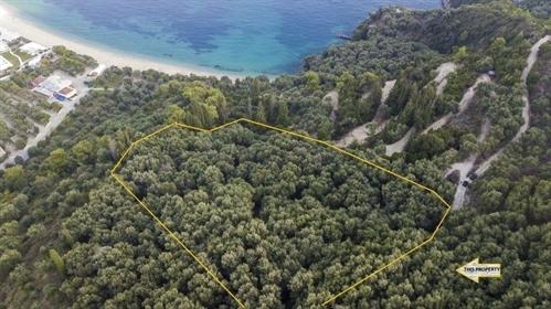 (Προς Πώληση) Αξιοποιήσιμη Γη Οικόπεδο || Ν. Πρέβεζας/Πάργα - 5.837 τ.μ, 330.000€