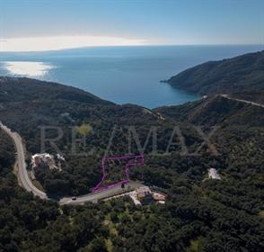 (Προς Πώληση) Αξιοποιήσιμη Γη Οικόπεδο || Ν. Πρέβεζας/Πάργα - 4.320 τ.μ, 90.000€