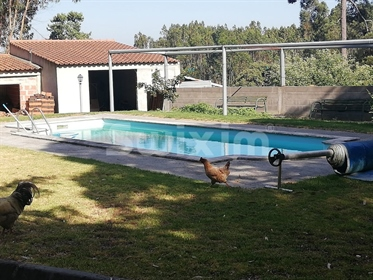 Quinta T7 with 1.2Ha land and Swimming Pool - Rio Maior