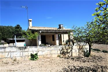 Small price for a house in Reve, Mallorca