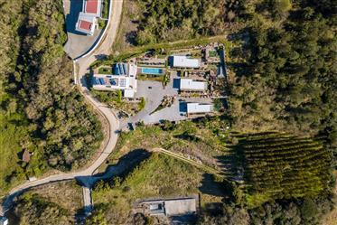 Moradia T3 + 3 Bungalows – Cela Velha - Alcobaça