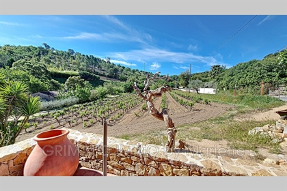 Hamlet house overlooking the vineyards. Living room with fir...