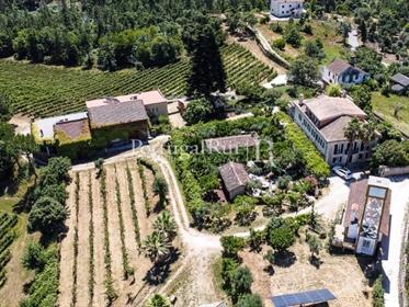 Quinta senhorial de 1754 para turismo rural com vinícola premiada