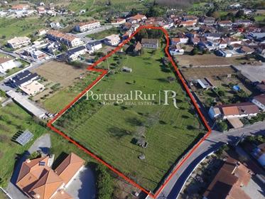 Quinta Viseu - Grande Potencial Urbanistico