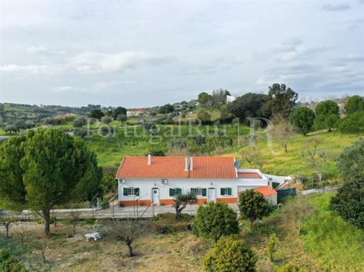 Quinta T4 com 2,8 hectares, armazém, furo e 500 árvores