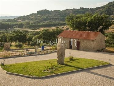 Quinta vocacionada para turismo rural com cinco moradias