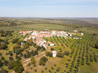 Estate 80 ha, with uninhabited village with unique character...