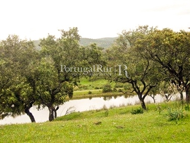Located in the vicinity of Minas-de Santo Domingo,it faces S...